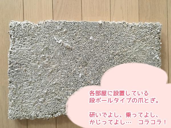 猫の爪とぎ防止!壁や柱でガリガリさせたくない人の対策方法3